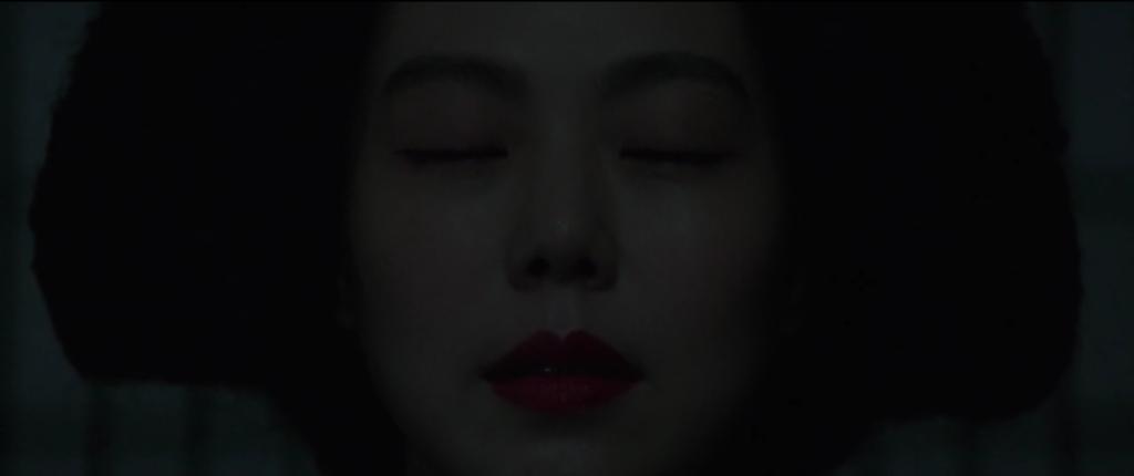 The Handmaiden-  Primo piano strettissimo su Hideko catturata dalla lettura del succitato passo.